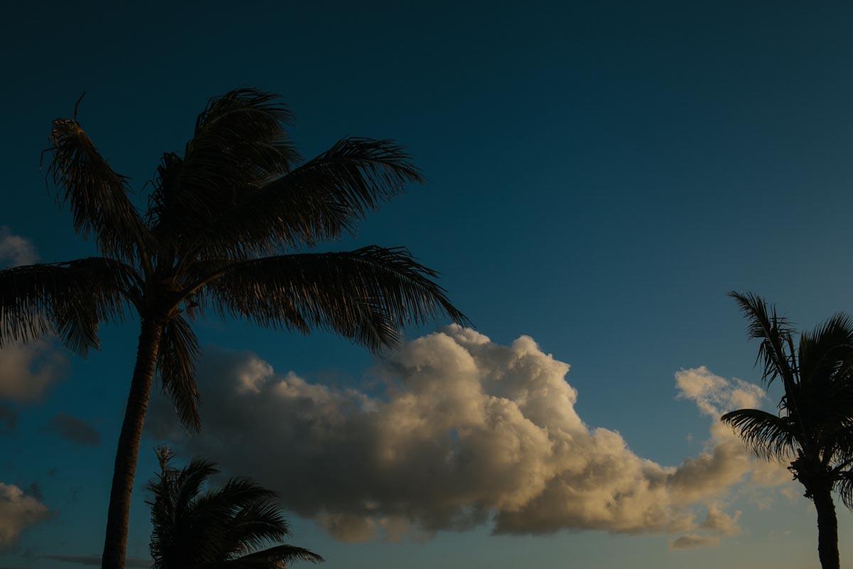 shelly wedding blog destination wedding turtle bay resort oahu hawaii-47